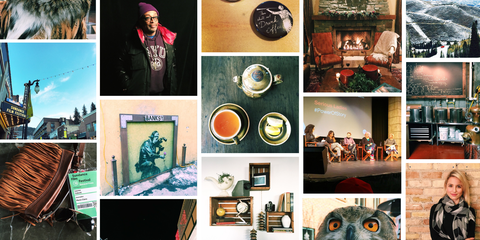 Human, Organism, Adaptation, Collage, Stock photography, Recipe,