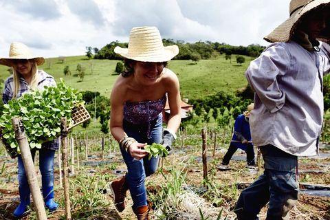 Hat, Jeans, Denim, Farm, Agriculture, People in nature, Sun hat, Soil, Fashion accessory, Headgear,