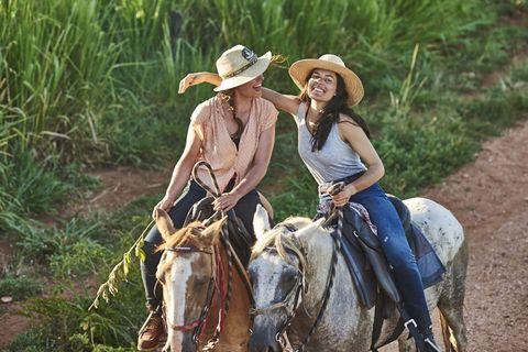 Human, Hat, Halter, Working animal, Landscape, Rein, Saddle, Bridle, Horse supplies, Horse,