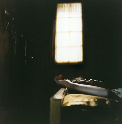Tints and shades, Bird, Still life photography, Window blind, Daylighting, Window covering, Window treatment, Shadow,
