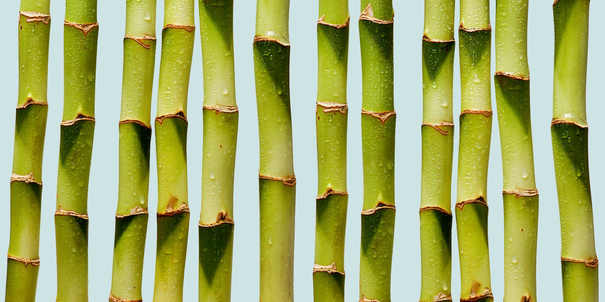 Banbu Porn bamboo water nutrient - bamboo health water