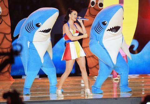 Vertebrate, Tooth, Jaw, Shark, World, Lamniformes, Cetacea, Lamnidae, Marine mammal, Cartilaginous fish,