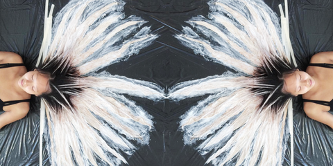 Grey, Symmetry, Wing, Bird,