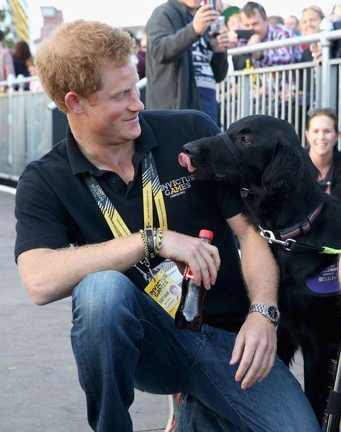 Human, Dog breed, Dog, Carnivore, Denim, Mammal, Interaction, Collar, Sporting Group, Companion dog,