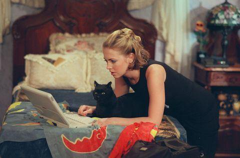 Small to medium-sized cats, Felidae, Cat, Sitting, Carnivore, Bag, Living room, Laptop, Black cat, Brown hair,