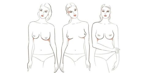 There Are 7 Different Types of Boobs in the World, Apparently
