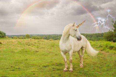 Scientists Just Discovered That Once Upon a Time, Unicorns Were Actually Real
