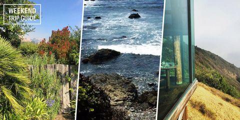 Vegetation, Coastal and oceanic landforms, Rock, Natural landscape, Coast, Shore, Bay, Raised beach, Inlet, Wildflower,