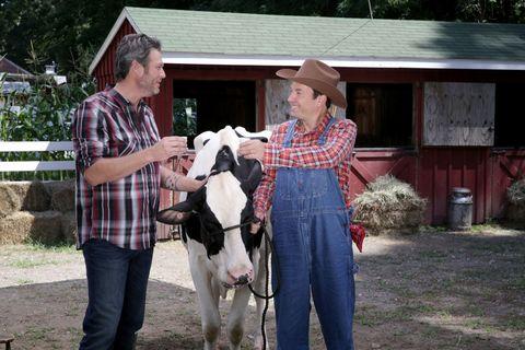 Human, Vertebrate, Hat, Farm, Interaction, Rural area, Goat, Livestock, Goats, Sun hat,