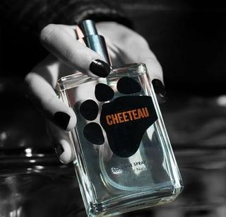 cheetos bronzer is real cheetos perfume and fragrance