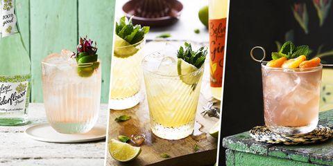 Drink, Ingredient, Produce, Cocktail garnish, Cocktail, Tableware, Classic cocktail, Liquid, Garnish, Citrus,