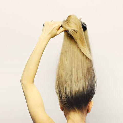 Hairstyle, Beak, Bird, Blond, Neck, Fawn, Beige, Long hair, Tan, Hair coloring,