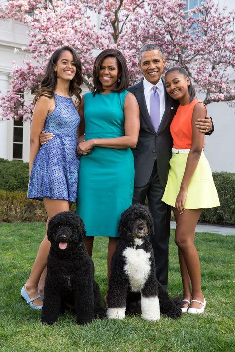 Human, Blue, Smile, Dog breed, Green, Trousers, Dress, Dog, Carnivore, Coat,