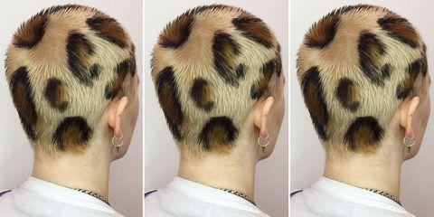Hair, Ear, Hairstyle, Fur, Neck, Skin, Jaw, Hair coloring, Black hair,