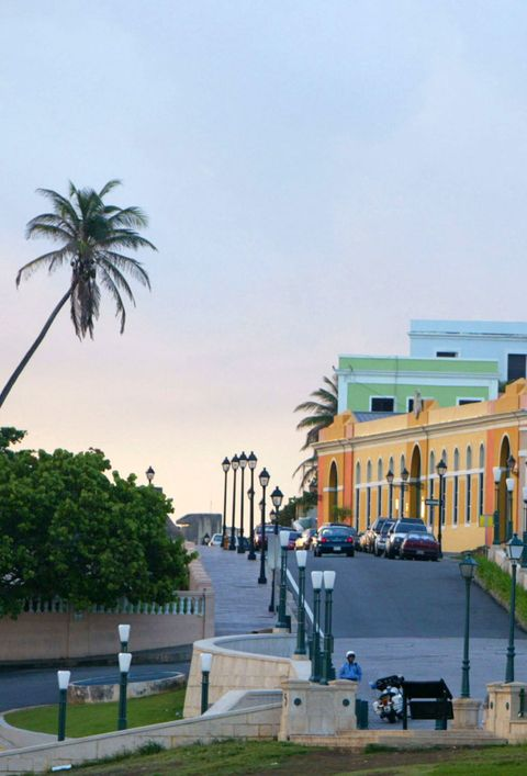 Tree, Sky, Daytime, Architecture, Residential area, Palm tree, Town, Building, Urban area, House,