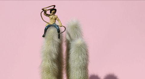Fur, Textile, Dress, Outerwear, Photography, Plant, Long hair,