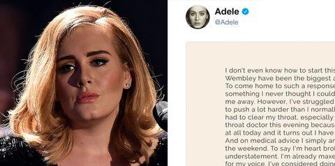 Adele Cancels Tour After Damaging Vocal Cords