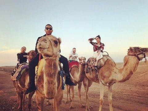 Camel, Camelid, Arabian camel, Mode of transport, Sky, Natural environment, Fun, Human, Landscape, Pack animal,