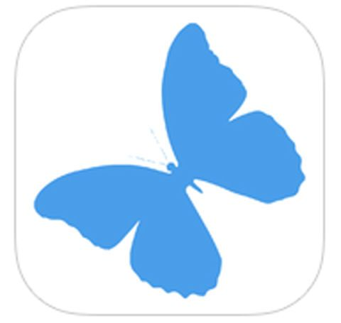 Wing, Azure, Pollinator, Electric blue, Clip art, Graphics, Butterfly, Symbol, Insect, Illustration,