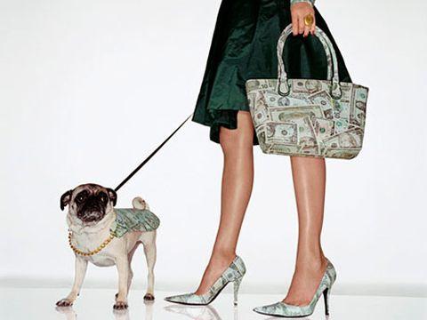 model carrying a dollar bill purse walking dog wearing a dollar sign cape