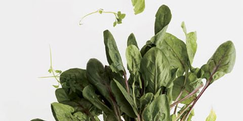 bunch of green spinach