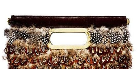 clutch covered with brown spotted feathers