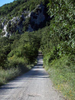 driveway to la macchia