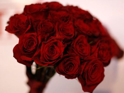 bunch of red roses