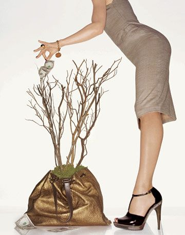 woman picking money off of a tree