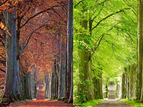 The 16 Most Magical Autumn Sensations
