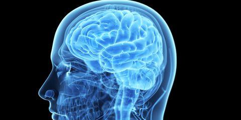 Blue, Electric blue, Brain, Organ, Cobalt blue, Human anatomy, Brain, Bioluminescence, Science, Cnidaria,