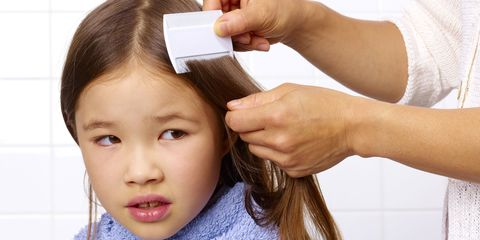 Parent combing child's head for head lice