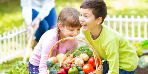 Nose, Ear, Mouth, Whole food, Local food, Natural foods, Produce, Vegan nutrition, Community, Basket,