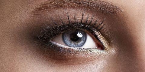 Blue, Brown, Skin, Eyelash, Eyebrow, Iris, Amber, Beauty, Organ, Colorfulness,