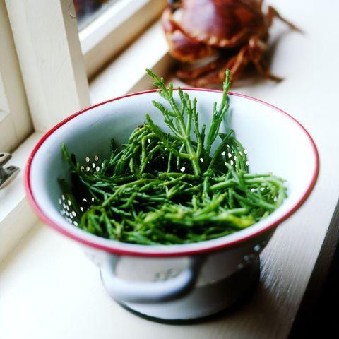Bowl of samphire on windowsill