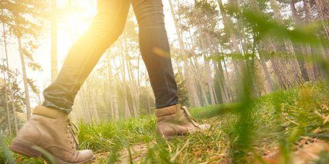Female hiker walking through woods