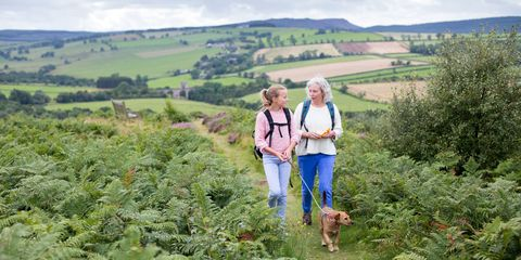 A happy mature woman smiles as she walks through the countryside with her granddaughter and her pet dog. They are walking through the hills out in the countryside.