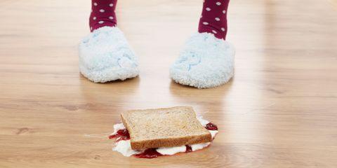 jam sandwich fallen on the floor