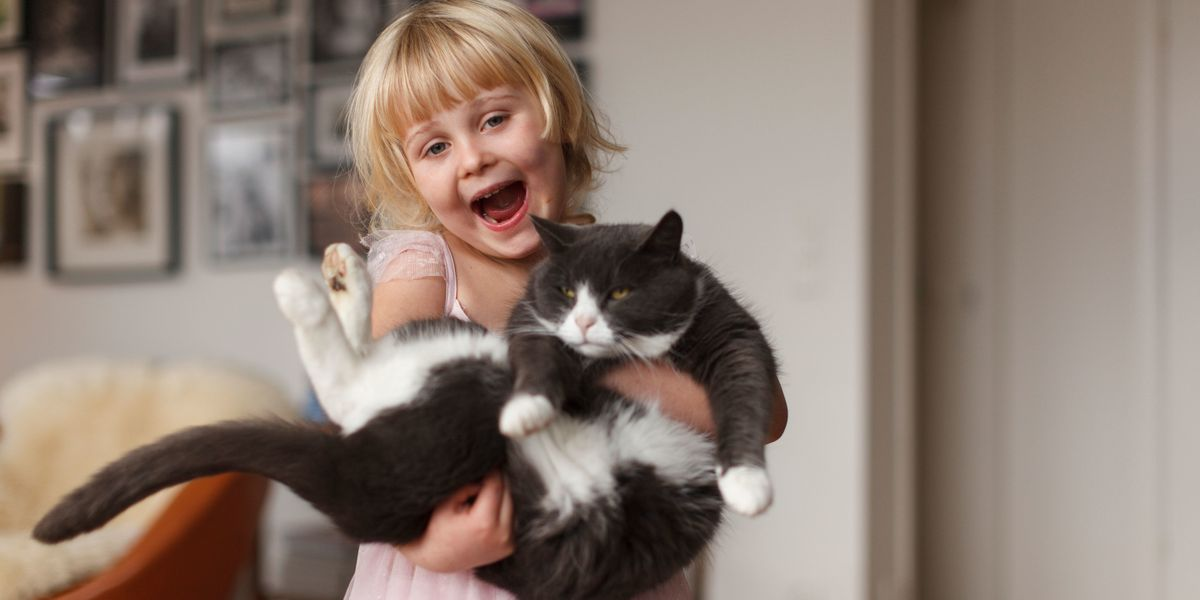 Talking to your pets is a sign of intelligence, science reveals