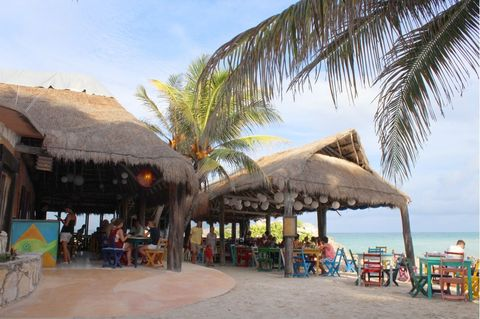 Leisure, Thatching, Tourism, Woody plant, Arecales, Tropics, Vacation, Ocean, Caribbean, Shade,