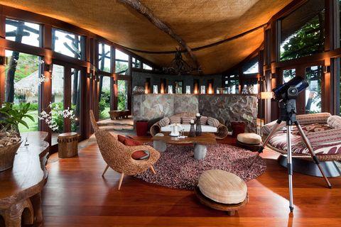 Wood, Hardwood, Interior design, Flowerpot, Flooring, Floor, Room, Wood flooring, Interior design, Laminate flooring,
