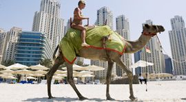 Nature, Mode of transport, Camel, Daytime, People, Fun, Organism, Natural environment, Tourism, Vertebrate,