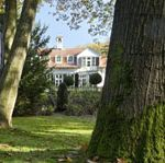 Nature, Grass, Green, Property, Photograph, Collar, Leaf, Neighbourhood, Real estate, Formal wear,