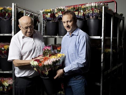 Floristry, Flower, Plant, Event,