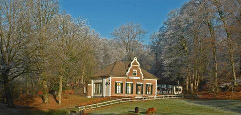 Property, House, Home, Estate, Building, Tree, Log cabin, Farmhouse, Cottage, Real estate,