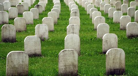 Nature, Grass, Photograph, Line, Cemetery, Groundcover, Atmospheric phenomenon, Headstone, Biome, Parallel,
