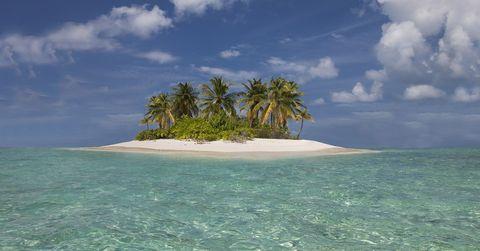 Tropics, Nature, Tree, Vegetation, Sky, Sea, Island, Natural landscape, Caribbean, Coastal and oceanic landforms,