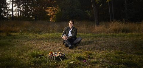 Grass, Sitting, Grass family, Photography, Sporting Group, Canidae, Grassland, Autumn, Hunting dog, Forest,