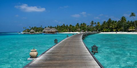 Body of water, Coastal and oceanic landforms, Water, Tree, Shore, Aqua, Coast, Ocean, Turquoise, Caribbean,