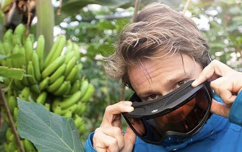 Personal protective equipment, Botany, Leaf, Eyewear, Helmet, Fun, Tree, Plant, Glasses, Photography,